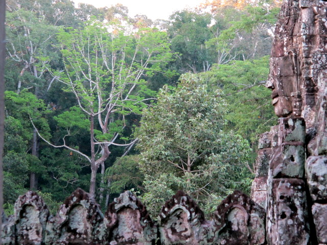 Face against a backdrop of the jungle at The Bayon
