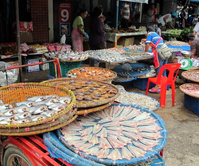 Fresh fish for sale in the Sukhothai market