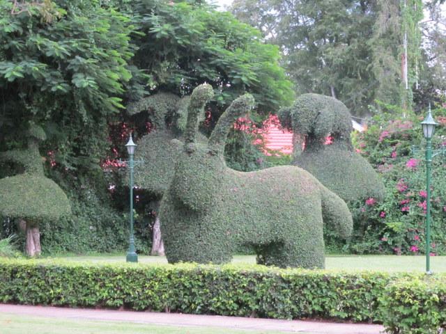 Topiaries in the garden of the old Railway Hotel