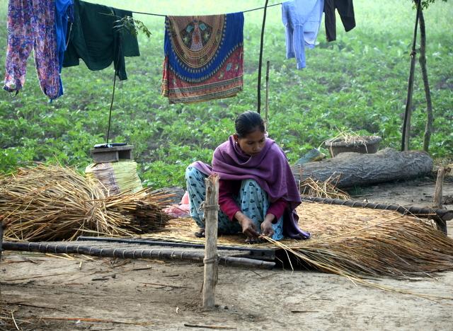In a Tharu village a woman weaves grass mats, Chitwan Nepal