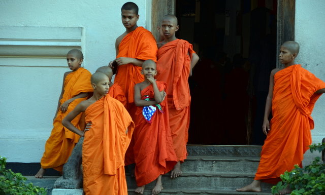 young monks gather in a doorway at the Temple of the Sacred Tooth