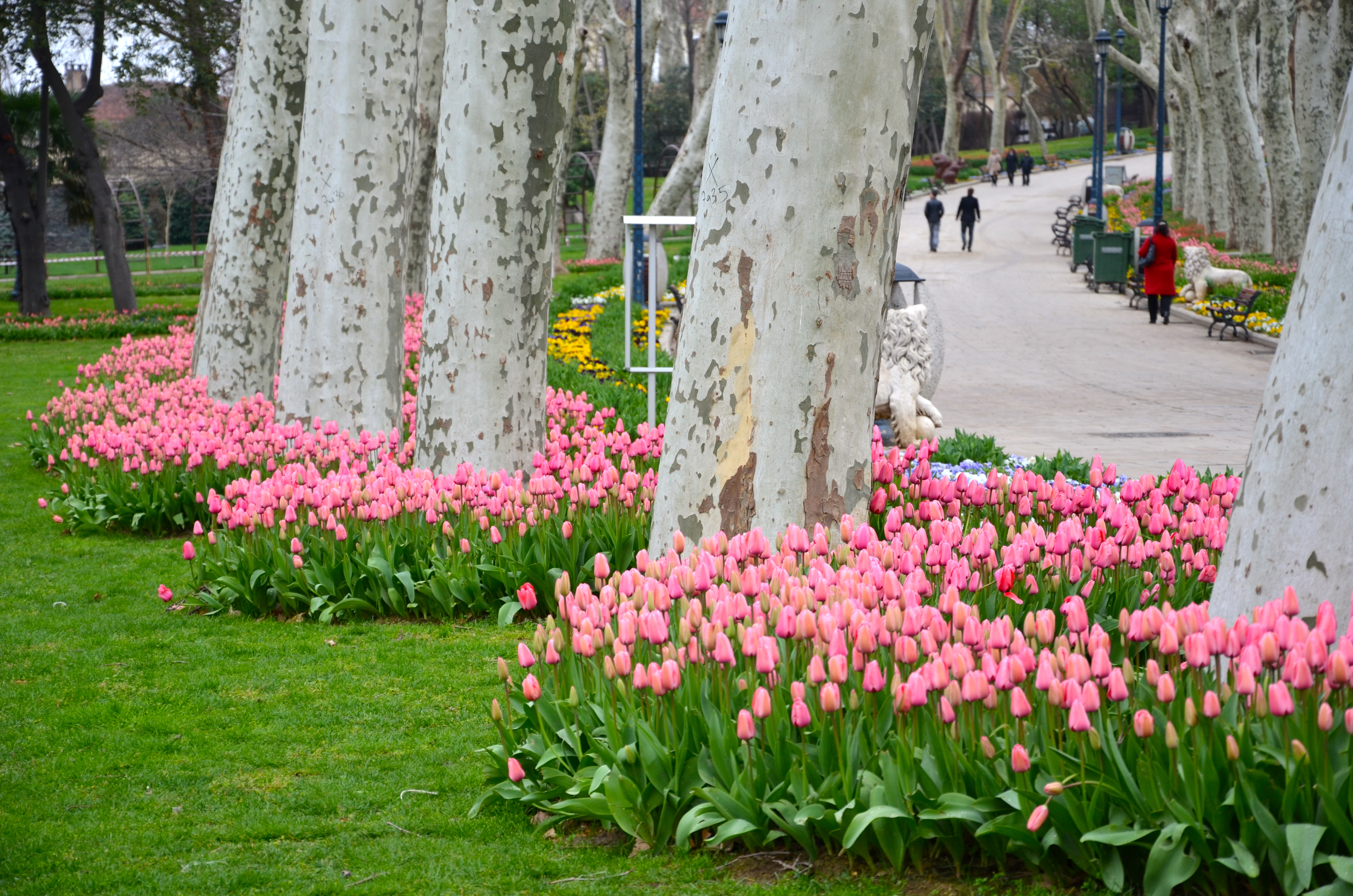 Parks Gradens Of Istanbul