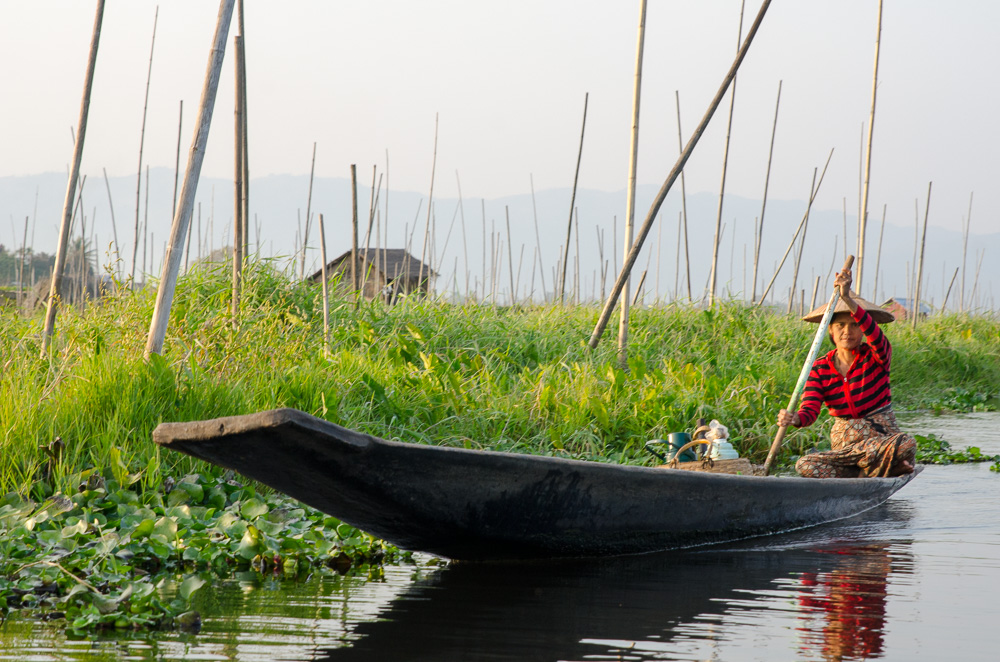 Floating Gardens on Inle Lake